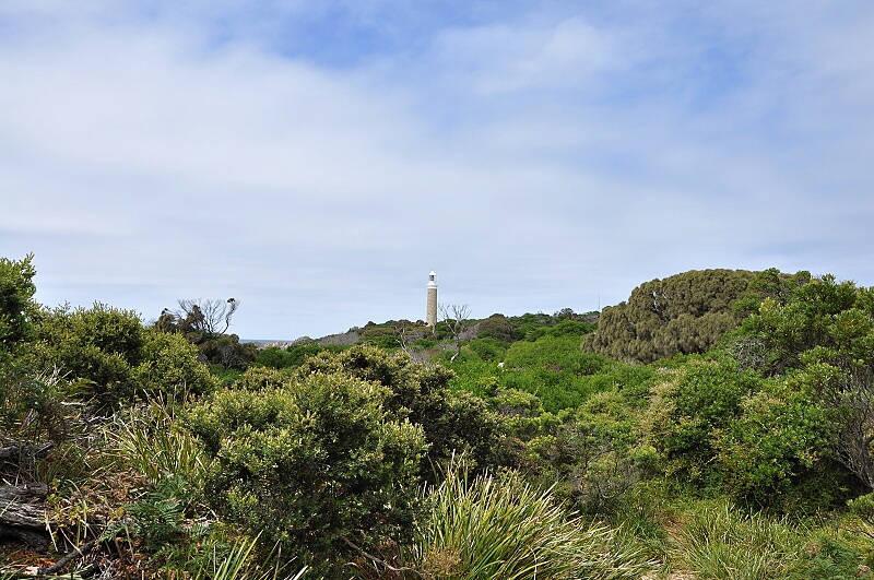Tasmánie - maják na konci světa