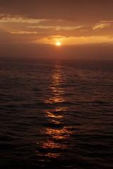 Random image: prace-na-lodi-ocean-21